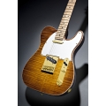 Fender - Select Telecaster, Gold Hardware, Birdseye Maple Neck