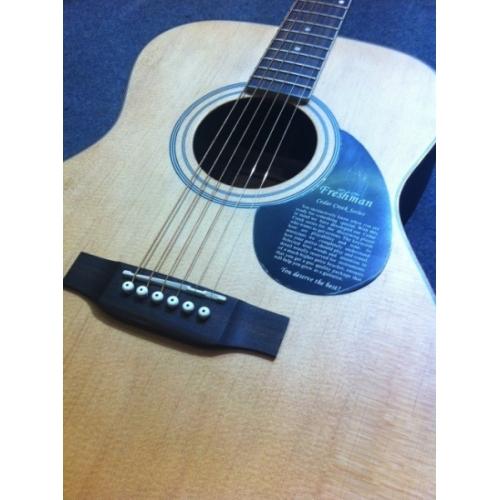 Freshman - FA-350GA, Electro Acoustic, Fishman Pickup