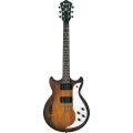 Ibanez - AMF73, Hollow Body, Rosewood