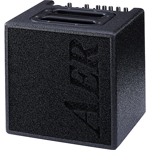 AER, Alpha 40 Acoustic Guitar Amp