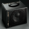 AER - Amp One, Bottomline Bass Combo
