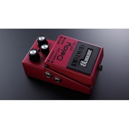 BOSS DM-2w WASA Delay
